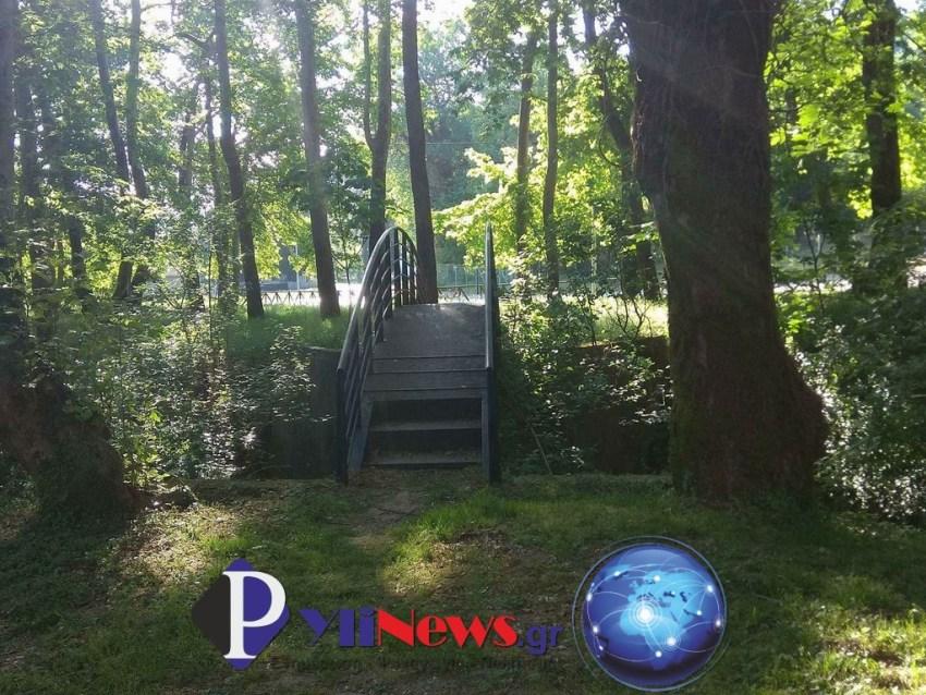 Pialeia (3)