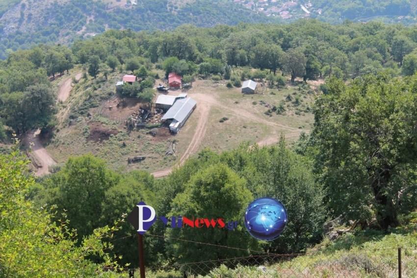 Pialeia Ag Paraskevi (3)